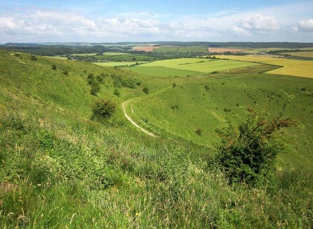 Wiltshire Walks aims to make it easier to travel along footpaths through the countryside. Picture: DEREK HARPER