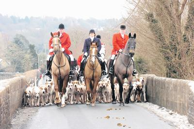 The Wiltshire Gazette and Herald: Hunting in Lacock in 2019