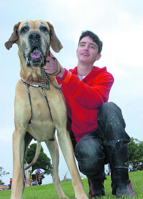 Bradley Cowtan with his Great Dane Duke taking a proud stance at the show