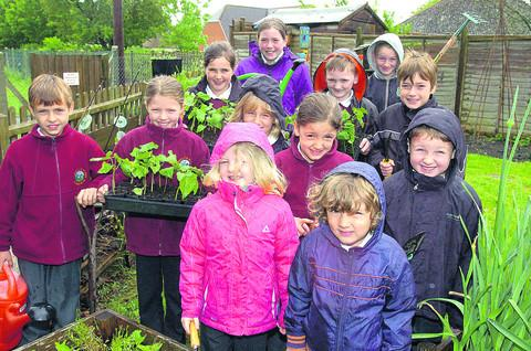 Pupils get set to plant out the new allotment