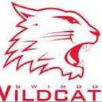 The Wiltshire Gazette and Herald: ICE HOCKEY LIVE: Swindon Wildcats v Slough Jets