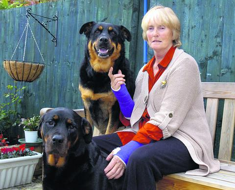 Karen Herbert with her dogs Tia and Taz