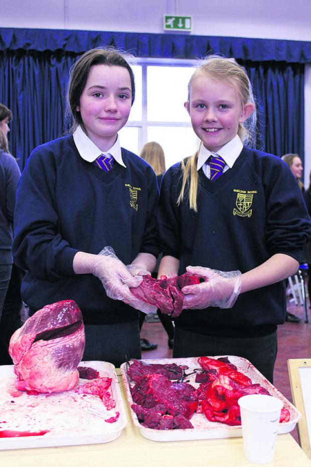 Georgia Glass and Jasmine Rees with their ox heart