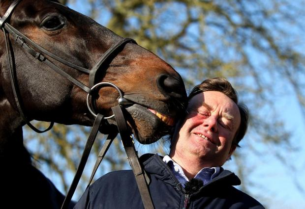 Trainer Nicky Henderson with stable star Sprinter Sacre at his Seven Barrows base in Lambourn today