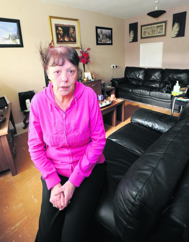 The Wiltshire Gazette and Herald: Lynn Cosh says pests have made her life a misery