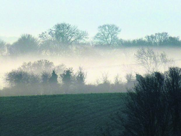 The Wiltshire Gazette and Herald: A misty morning looking across a view on Manor Farm.