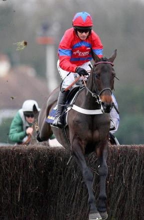 Sprinter Sacre has been ruled out of the Cheltenham Festival