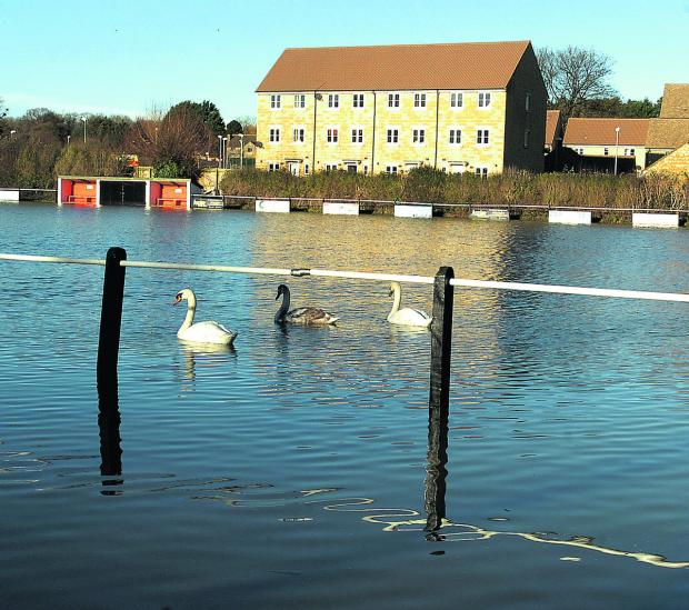The Wiltshire Gazette and Herald: Swans go sailing by on Malmesbury Vics' flooded pitch on Christmas Eve