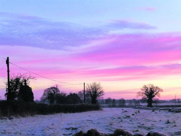 A rare frosty morning on Manor Farm