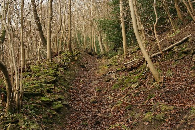 The Wiltshire Gazette and Herald: Wiltshire Council is looking at how looks rights of way can be used for exercise and outdoor activities, and accessibility improved for people with disabilities