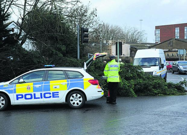 The Wiltshire Gazette and Herald: Fallen tree, such as this one in Trowbridge last week, were being cleared across Wiltshire following the storm on Friday