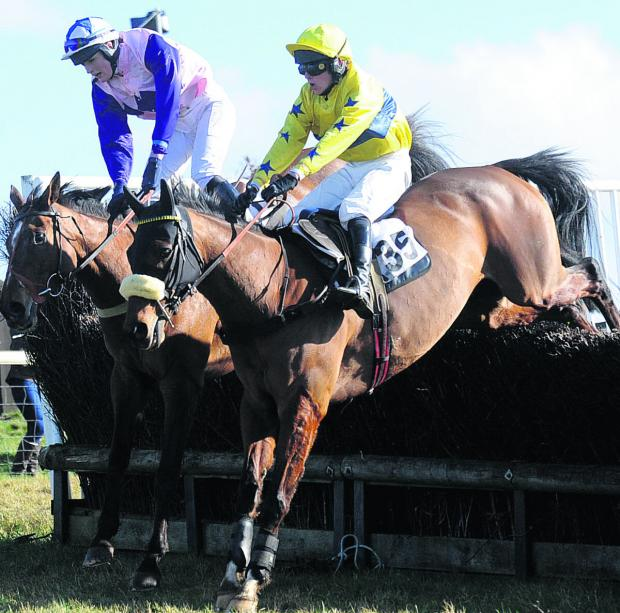 aCTION FROM THE The Four, Five, Six and Seven Year Olds open Maiden race at the Vine & Craven meeting at Barbury racecourse on Sunday (Picture by Diane Vose)