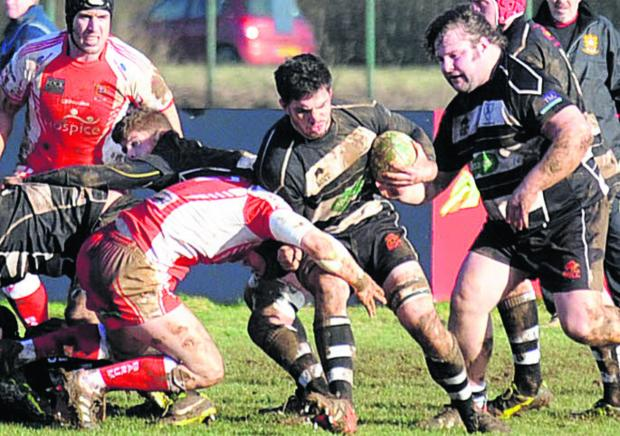 Chippenham's Tom Knight goes on the charge against Barnstaple last weekend