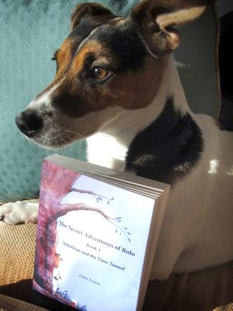 Rolo and the first book