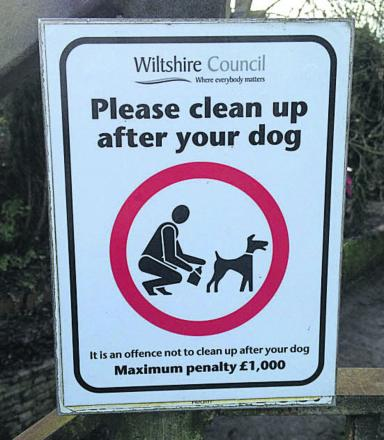 It is a civil offence not to clear up after dogs
