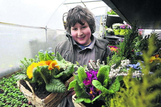 Anise Mehrez, 13, of Neston, has set up his own online plant sales business
