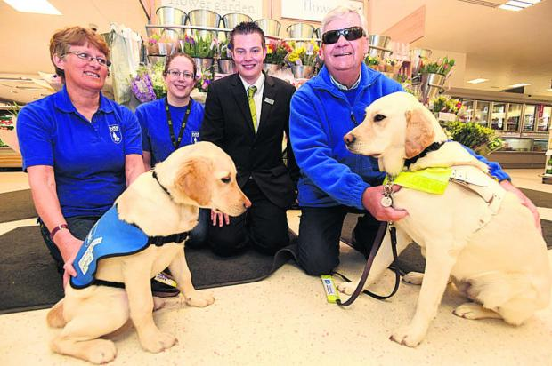 Di Clarke with puppy Fletcher, Natalie Levin of the charity, Waitrose's John Goddard and Alan Fletcher with Nutmeg
