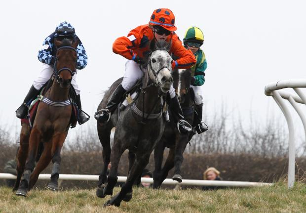 POINT TO POINT: Ramsbury's Caspar saddles up at Lockinge