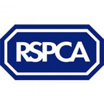 Three people have been charged on suspicion of animal cruelty by the RSPCA