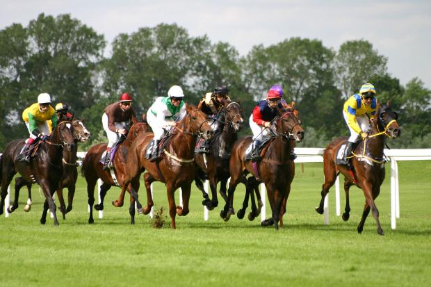 RACING: Dream preparation for Lambourn's Osborne