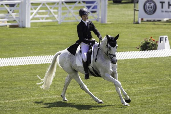 Francis Whittington and Easy Target dressage leaders at the end of day one (Picture by Libby Law Photography)