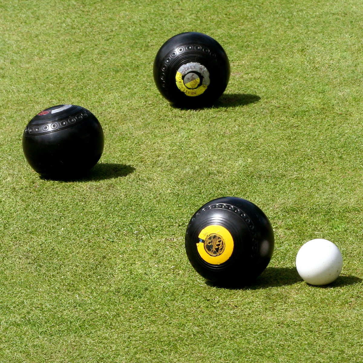 BOWLS: Reade and Ellis book national berths