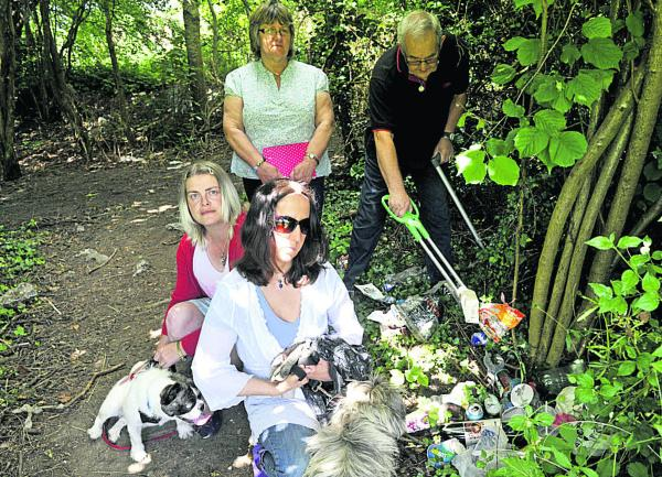 Marlborough group to fight litter blight