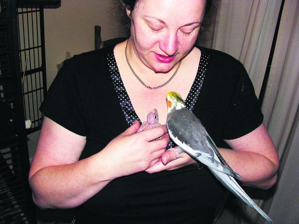 Wendy Bos with BB the cockatiel, right, who is missing from her home in Devizes
