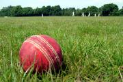 CRICKET: Clubs set to vote on revamped regional cricket structure for 2016