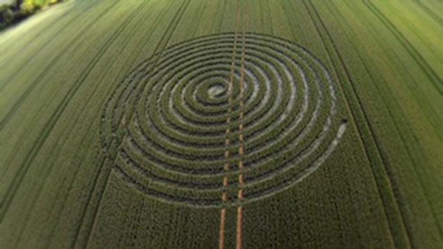A picture of the crop circle near Malmesbury taken by Wiltshire Police