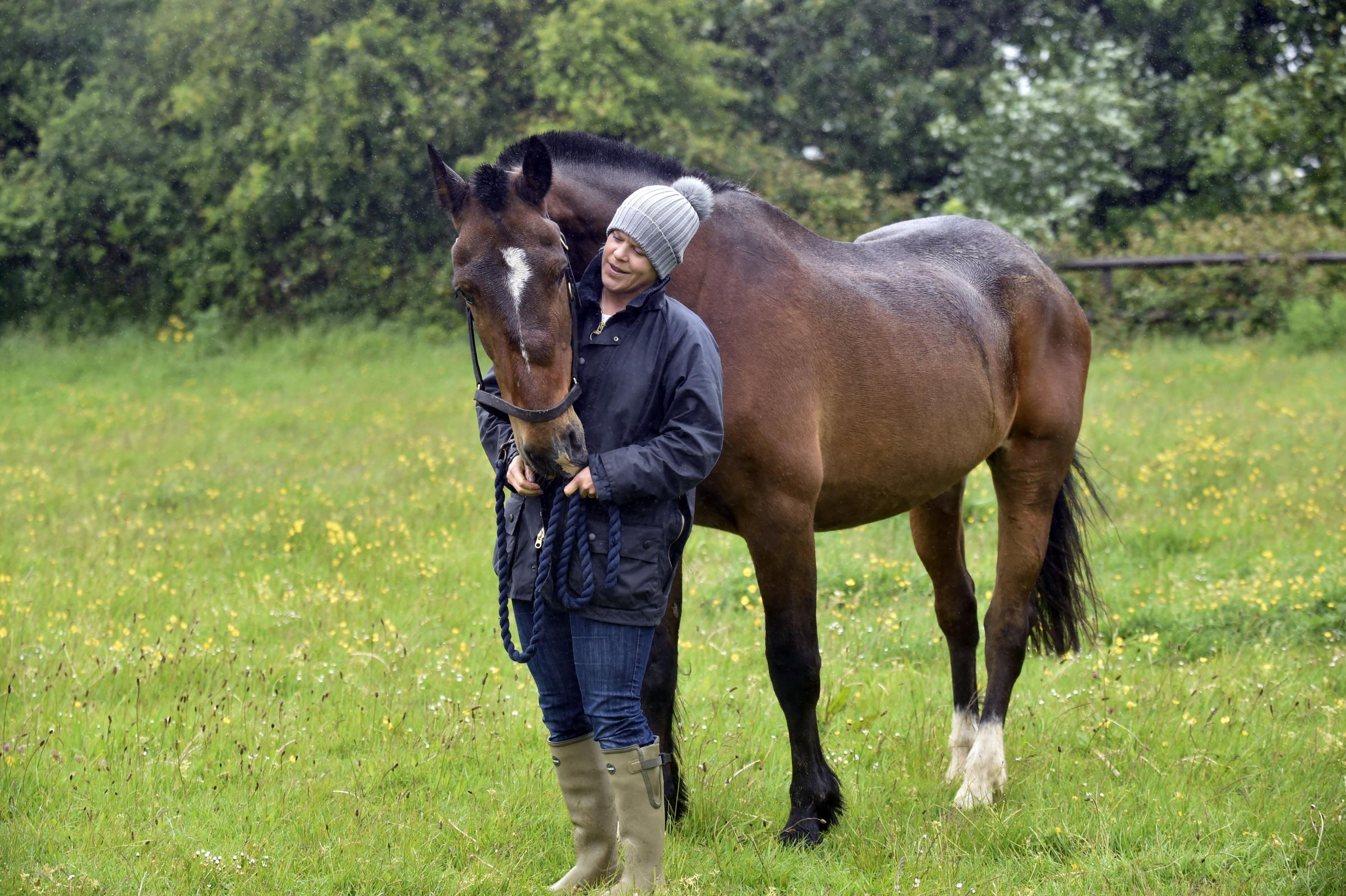 Strangles in horses all you need to know  Horse amp Hound