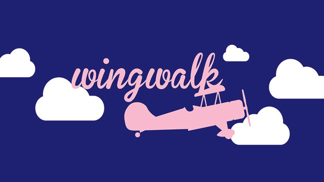 Wing Walk Challenge for Dorothy House