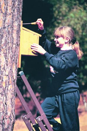 It isn't too late to put up nestboxes for the spring, says the RSPB