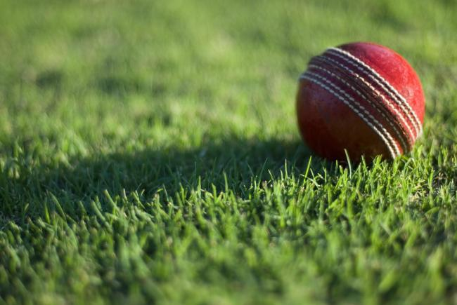 a cricket ball laying on a playing field.