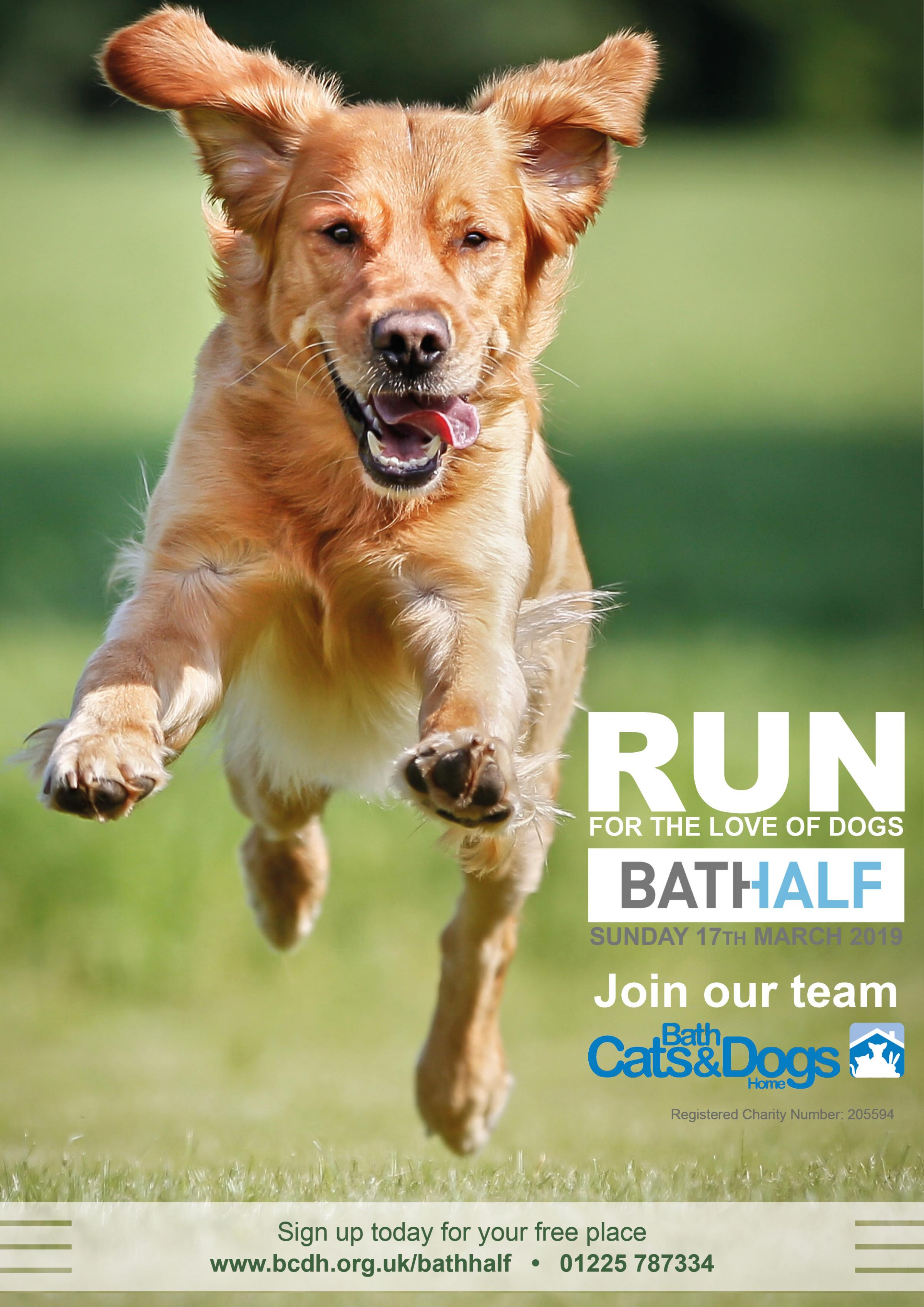 Run for BCDH in the 2019 Bath Half
