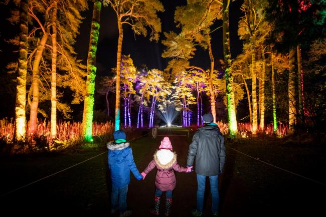 Enchanted Christmas.Explore The Enchanted Forest At Westonbirt S Enchanted