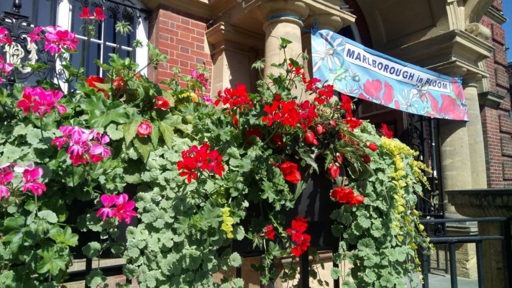 Marlborough in Bloom will be on TV this weekend